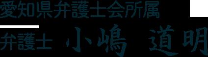 愛知県弁護士会所属 弁護士 小嶋道明